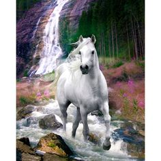 Bob Langrish Waterfall Mini Poster