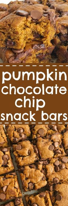 Pumpkin chocolate chip bars are the best Fall dessert and treat! Like a pumpkin muffin but more dense, cake-like, super soft, and loaded with milk chocolate chips. These are my kids' most requested Fall pumpkin treat. They are heavenly snack cake bars tha