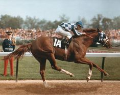 This is the furtherest I have ever seen a horse bring his hindleg underneath him... Secretariat. I am mindblown by his reach of stride!!!!