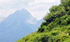 MALGA OBISELL DI SOTTO (2000m) | SNOWCAMPITALY | Il piccolo insediamento di Gaveis (1310m) è il crocevia di itinerari che si incuneano in un ambiente ancora selvaggio ed incontaminato, quello del Gruppo di Tessa; Valle di Sopranes, Maso Longfall, Coston del Gallo, Lago e Malga Obisell, Forcella e Valle di Saltusio, sono solo alcune tra le esclusive mete escursionistiche che consentono di vivere momenti forse irripetibili. snowcamp.it