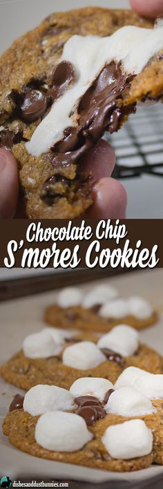 Chocolate Chip S'mor