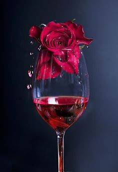 Rose in red wine by Linn Andrea Valde - Photo 92921505 / Wine Wallpaper, Power Wallpaper, Black Wallpaper Iphone, Flower Phone Wallpaper, Red Wallpaper, Wine Glass, Glass Art, Wow Photo, Wine Photography