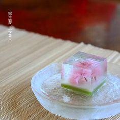 . Today, I made japanese traditional sweets kinngyoku which express spring flower Sakura ▫️▫️▫️▫️▫️ ▫️▫️▫️▫️▫️▫️▫️▫️▫️▫️▫️▫️▫️▫️▫️▫️▫️肌寒い日がしつこく続きますねー! . 昨日の夜なんて 冬に逆戻りな寒さでした . そんななか、なんなんですが、、 ちょっと涼しそうな画像をアップさせて下さい . 菓銘は、「桜並木」 . 昨日の人気投稿で、桜の塩漬けを透明なアガーに閉じ込めた、世にも美しいババロアを見かけて 錦玉でもつくれないかな、。と . 試しに作ってみました。 . 透明な部分は桜の花の味の錦玉羹 真ん中は白餡の半錦玉羹。 一番下は抹茶の半錦玉羹。 . ぶるぶる、 ,