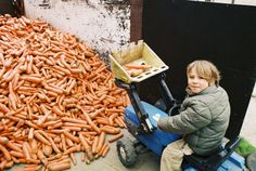 Carrots… anyone? veggirider.com
