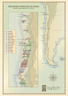 Hand illustrated map of Chilean Wine Country