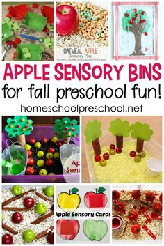 Wow! What a great collection of apple sensory bin ideas for preschoolers. They're perfect for your apples preschool theme. #homeschoolprek #applespreschooltheme #applesensorybins