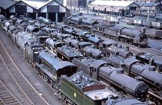 A well known photo of Eastleigh shed in the early as the locos are all in pre 1956 livery. Probably a Sunday or a strike day judging by the number of locomotives on shed. Nice top view of the Maunsell tender in the foreground for modellers. Diesel Locomotive, Steam Locomotive, Steam Trains Uk, Steam Railway, Southern Railways, British Rail, Old Trains, Train Pictures, Train Engines