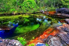 plitvice lakes national park The River of Five Colors: Cano Cristales, Colombia - Google Search