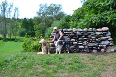 a summer stone wall project