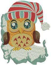 Owl in striped hat