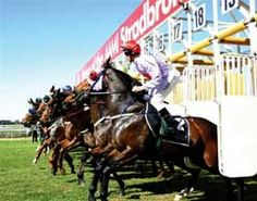 horse racing  http://sportsbettingarbitrage.in