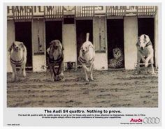 Audi - Nothing to Prove Print Ad x - See Blend for More! Clever Advertising, Print Advertising, Marketing And Advertising, Guerrilla Marketing, Quiet Confidence, Audi S4, Great Ads, Prove It, Cheetah Print