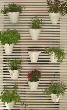 Horta vertical em apartamento