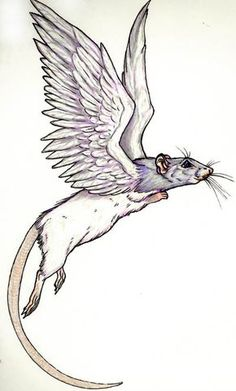 Ratwings, flying rat by GrimVixen on DeviantArt