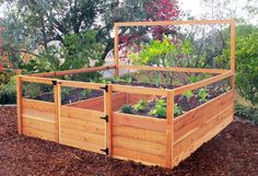 8'x8′ Just-Add-Lumber Vegetable Garden Kit – Deer Proof – Gardens To Gro