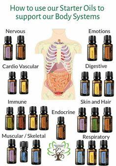 Aceites y soporte a órganos