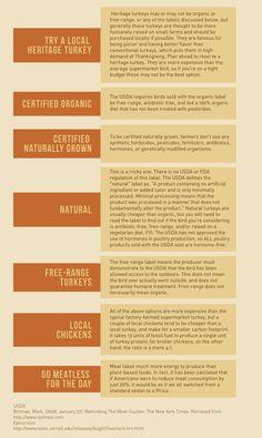 Talking Turkey - Deciphering sustainable turkey options | Sustainable America