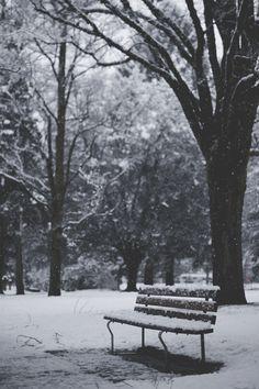 "teapalm: "" Snow (Tasha Marie) For Panda since he never sees snow """