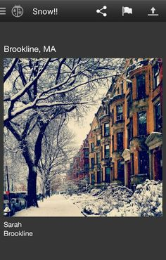Brookline MA in the snow