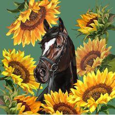 Horse with Sunflowers Comforters by Big Nose Work - Queen: x Horse Wallpaper, Animal Wallpaper, Big Noses, Equine Art, Horse Art, Sunflowers, Nursery Decor, Comforters, Art Drawings