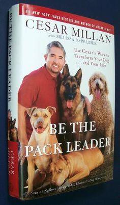 Be The Pack Leader by Cesar Millan (The Dog Whisperer).