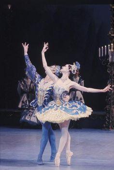 McMurdo, Don, [Australian Ballet performance of The sleeping beauty, with Leanne Rutherford and Mark Annear in the Bluebird pas de deux, December [transparency] Ballet Tutu, Ballet Dancers, Bolshoi Ballet, Ballet Class, Contemporary Dance, Modern Dance, Ballet Costumes, Dance Costumes, Sleeping Beauty Ballet
