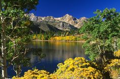 Twin Lakes Toiyabe National Forest California