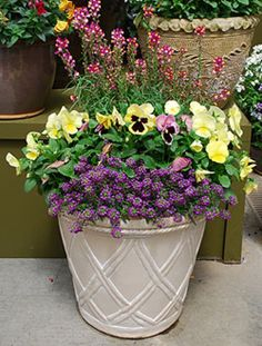 In this garden planter, a few simple pansies will brighten up your day every time you see them.