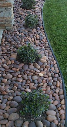 Incredible modern rock garden