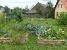 vyvyseny-zahon-v-prirodni-zahrade-v-plne-plodnosti.jpg (800×600)