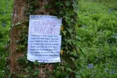 Hunting for Dragon Eggs in the wood via Family Days, Tried and Tested