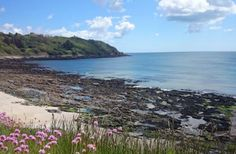 Get the most from staying near the coast with adventure filled things to do close to Falmouth Falmouth Beach, Falmouth Cornwall, Stuff To Do, Things To Do, Cornish Beaches, Days Out, Coast, Adventure, Water