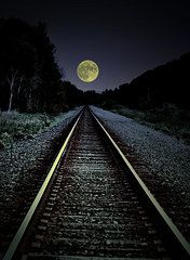 Moon Featured Images - Track To The Moon  by Emily Stauring
