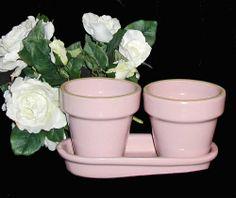 Pink Flowerpots in Tray