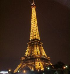 Lovely Eiffel by night