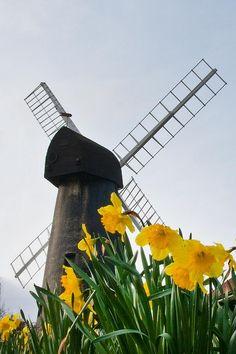 Brixton Windmill - the new Jellybooks 'hood