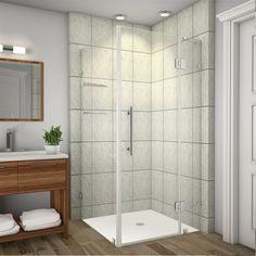 Avalux GS 32 Inch X 30 Inch X 72 Inch Completely Frameless Shower Enclosure With Glass Shelves In Stainless