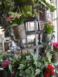 my love for mason jars and planters all in one!