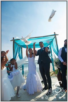 the release of two white doves