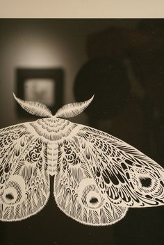 .hand cut paper artwork【moth】OK, moth, don't eat my clothes, but if you are a papercut only, can you be in my home!  SilhouetteCindisays. . .