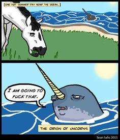 How unicorns are made