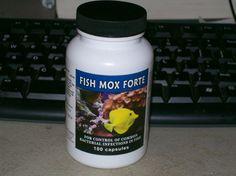 1000 images about fish antibiotics on pinterest fish for Fish antibiotics for humans