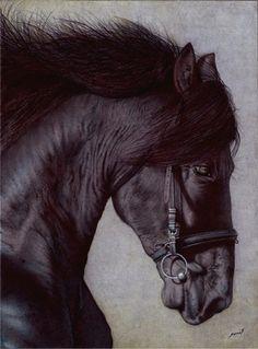 Horse Head - Ballpoint Pen (!?) by VianaArts.deviantart.com on @deviantART
