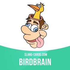 """Birdbrain"" means a silly or stupid person. Example: I'm such a birdbrain! I totally forgot that I had a doctor's appointment yesterday."