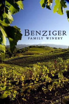 benziger winery - Organic Wine to try