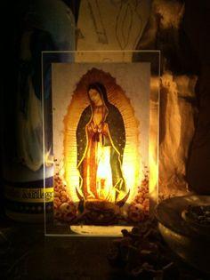 The Holistic Healer