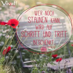 #Zitate und #Sprüche: »Wer noch staunen kann, wird auf Schritt und Tritt beschenkt.«