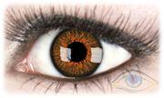 Europa Honey Contact Lenses
