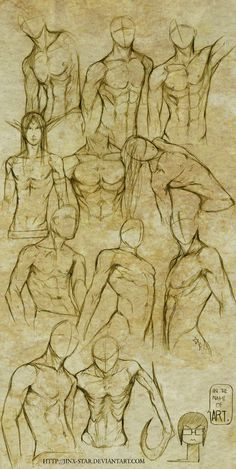 +MALE BODY STUDY I+ by jinx-star.deviantart.com on @deviantART
