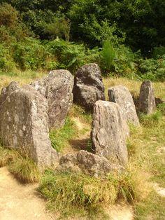 Broceliande, Ille et Vilaine, Bretagne Célèbre forêt qui Traverse la ville De Paimpont et Tréhonrenteuc